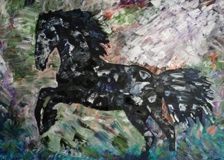 2016-05-11 pferd JW w